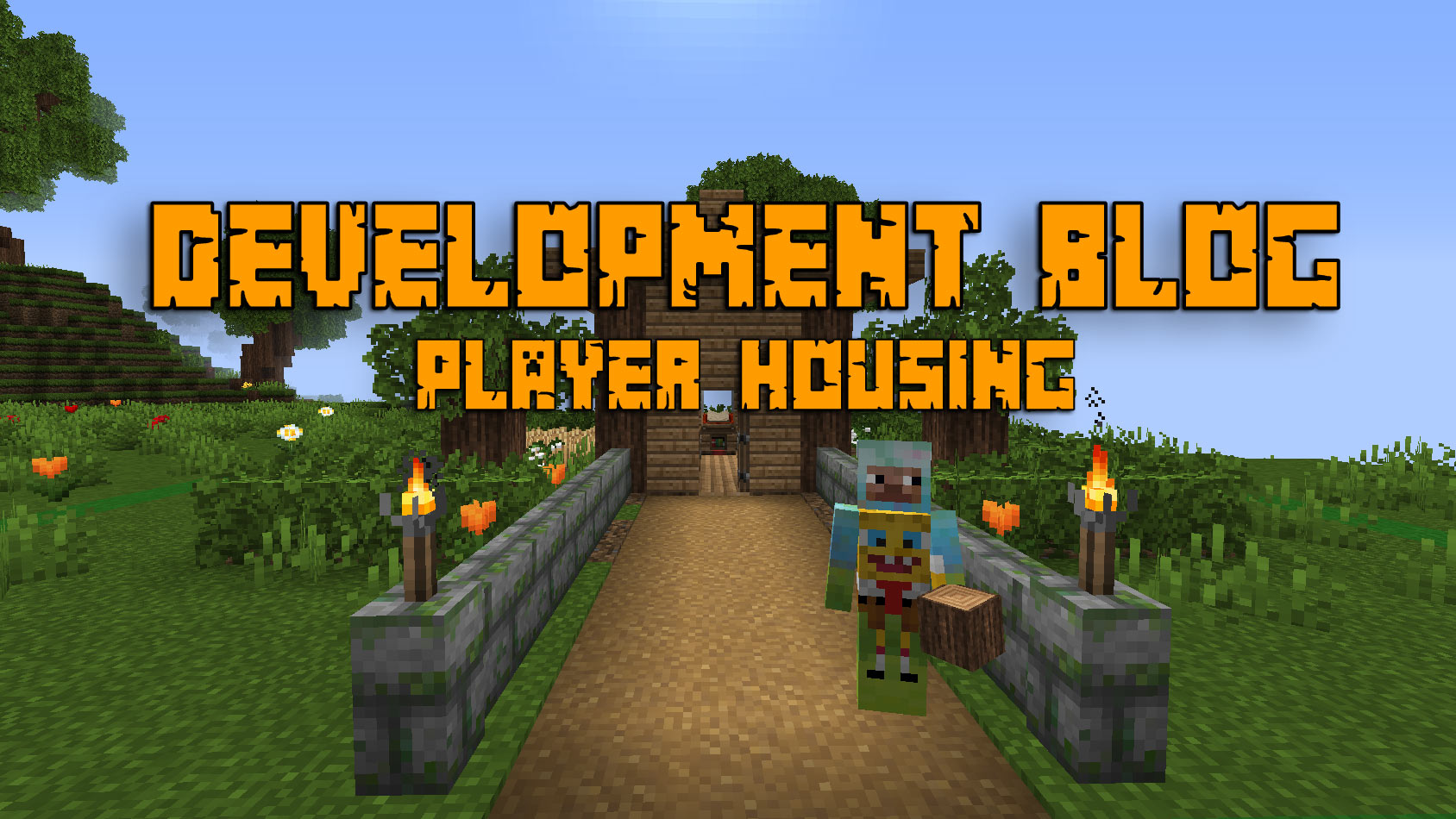 Portable Player Housing